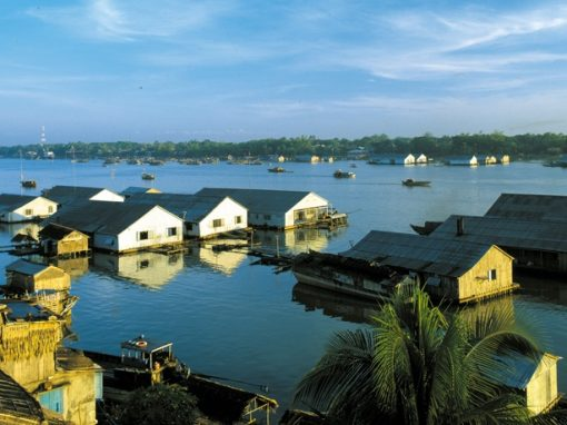 The ASC-certified pangasius farms in Vietnam - Your everyday fish